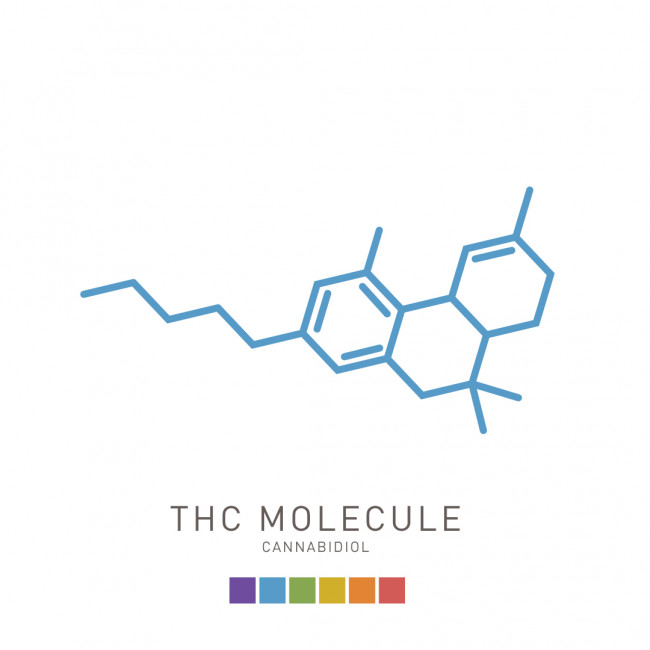 Illustration of a THC molecule